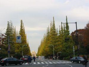 Icho2009